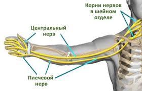 Шейный остеохондроз и онемение рук: как лечить состояние с помощью мануальной терапии