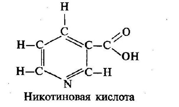 Никотиновая кислота при остеохондрозе: как принимать