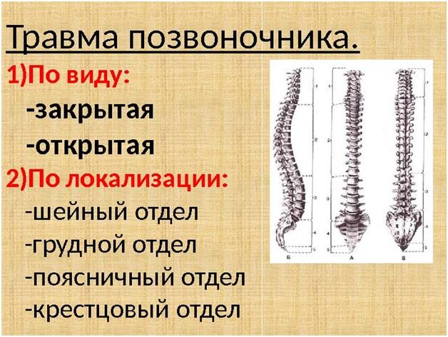 Травмы позвоночника и меры его профилактики