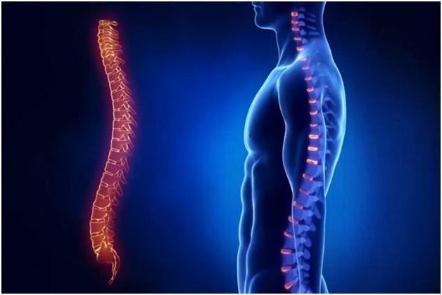 Не разгибаются мышцы спины thumbnail