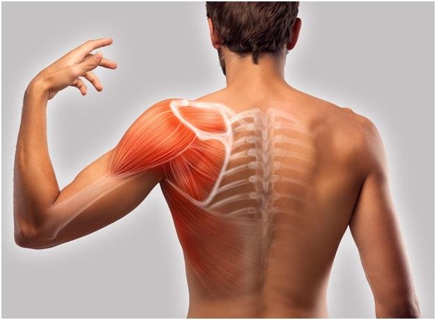 Боль в спине между лопатками. Почему и как лечить?